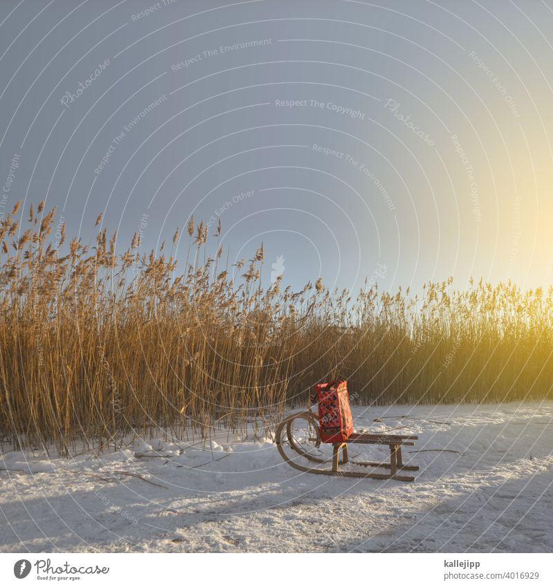 liferando Schlitten Schnee Winter Tüte Geschenk Weihnachten & Advent Weihnachtsmann Lieferung transport transportieren Eisfläche Schilfrohr Schilfgras