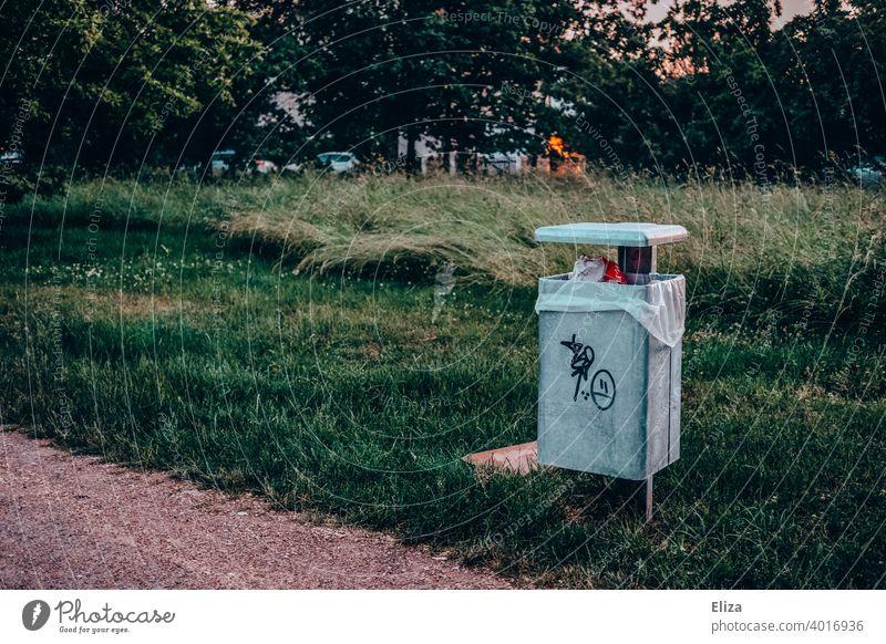 Mülleimer im Park Wiese abends grün Natur wegwerfen Abfall Müllbehälter Müllentsorgung draußen öffentlich