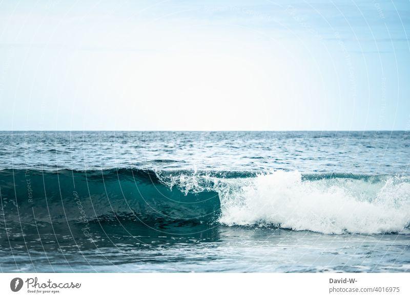 Entwicklung einer Welle im Meer Ozean blau kraft Wasser Wellen Urlaub Natur Himmel
