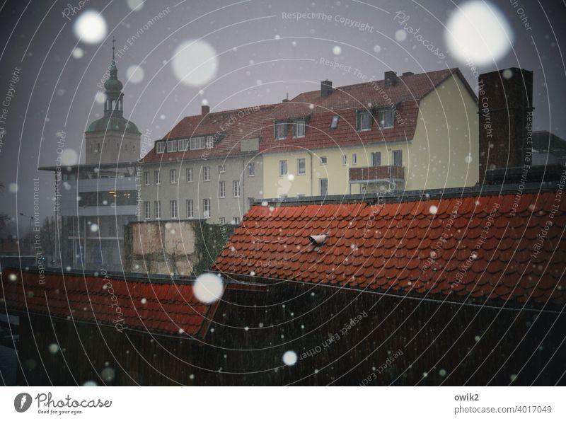Stadtmitte Stadtzentrum Haus Wetter Winter Schneefall Schönes Wetter Himmel dunkel kalt glänzend Außenaufnahme Detailaufnahme Gedeckte Farben Farbfoto Schweben