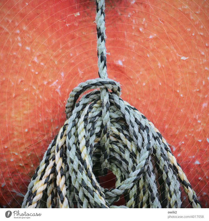 Verstrickungen Seil einfach abstrakt geduldig ruhig Pause Farbfoto Außenaufnahme Detailaufnahme fest maritim Ostsee Freizeit & Hobby hängend Boot