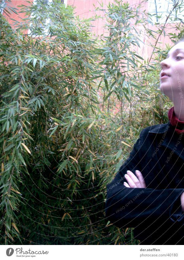 Träumen Farbfoto Außenaufnahme Textfreiraum links Tag Profil Blick nach vorn Sommer Student Frau Erwachsene Sträucher grün Ilmenau Christin Campus