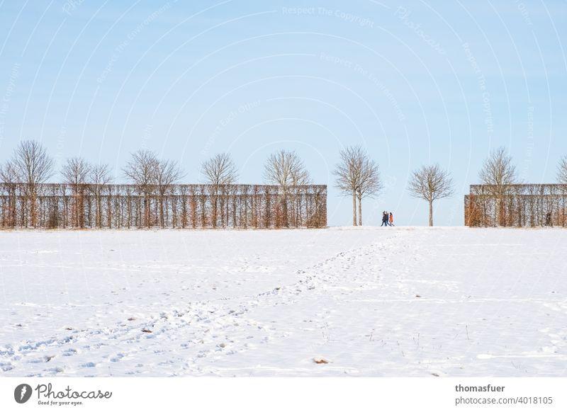 Menschen beim Winterspaziergang auf einer Allee mit Schneefeld und Himmel Weitwinkel Totale Kontrast Schatten Licht Tag Außenaufnahme kalt Wege & Pfade Baum