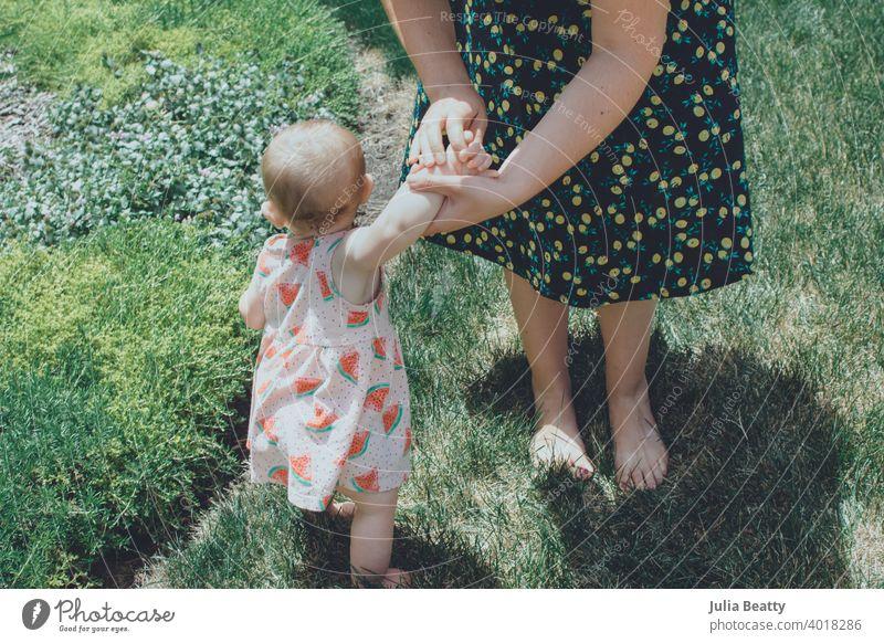 Mutter und Kind halten sich im Gras an den Händen; Kleinkind lernt zu laufen Baby 1 Jahr alt Kilometerstein Spaziergang lernen versuchen Sie Hilfsbereitschaft