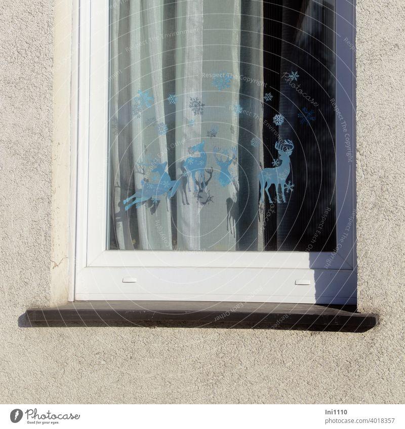 Fensterscheibe wurde mit winterlichen selbstklebenden Stickern dekoriert im Hintergrund ist eine weiße Gardine zu sehen Fensterbilder Weihnachtsdekoration