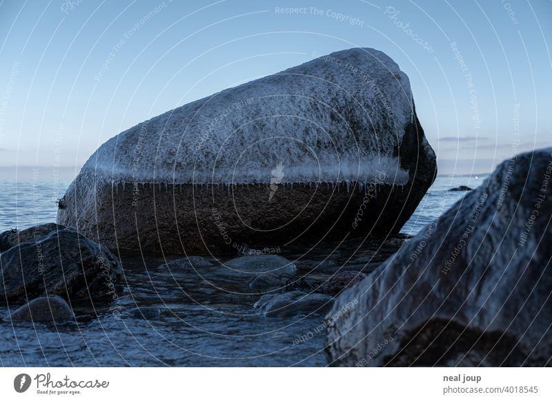 Großer rundlicher Felsblock mit frostiger Eiskappe am winterlichen Ufer Außenaufnahme Natur Landschaft Küste Meer Ostsee Winter Kontrast Baum filligran kalt