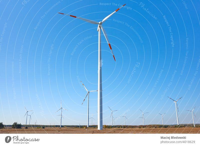 Bild eines Windkraftanlagenparks gegen den blauen Himmel. Windmühle Turbine Kraft Ökostrom Bauernhof regenerativ Elektrizität alternativ Umwelt Erzeuger