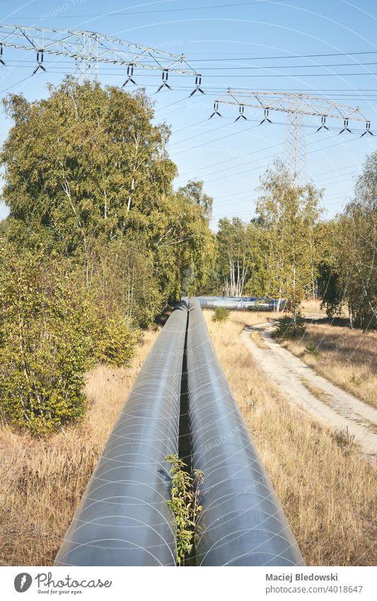 Pipeline mit Hochspannungsmasten im Hintergrund in einem Wald. Gas Röhren Natur Heizung Industrie Kraft Energie Technik & Technologie Umwelt Linie Business