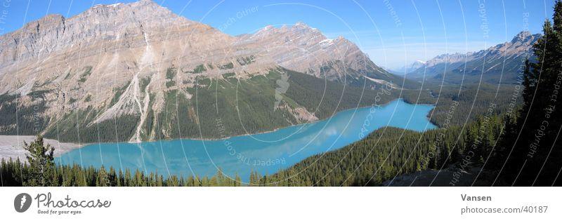 Peyto Lake See Kanada Alberta Panorama (Aussicht) groß Panorama (Bildformat)