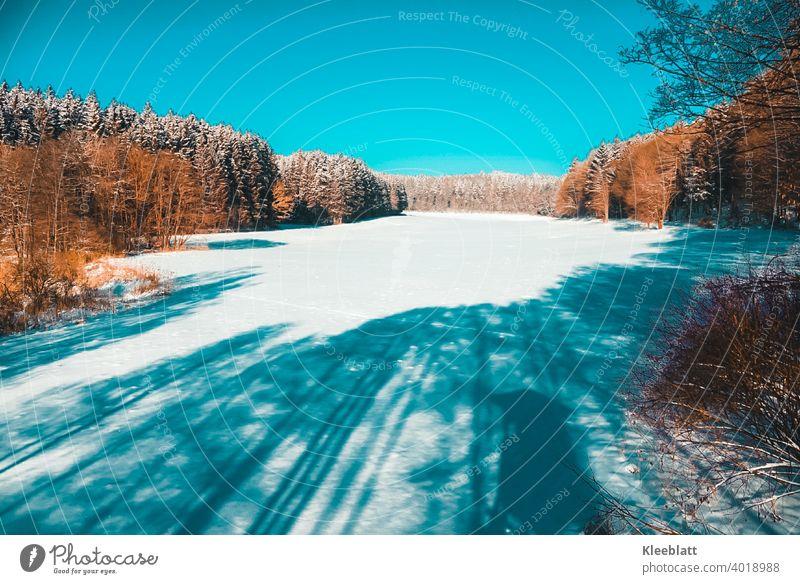 Im Himmelreich - Naherholungsgebiet in den schönsten Winterfarben vom Hochsitz eines Jägers aus gesehen Braun Weiß Blau herrliche Winterfarben Wintersonne