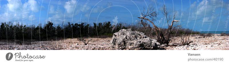 Dürre Sonne Einsamkeit groß Insel Wüste dünn Panorama (Bildformat)
