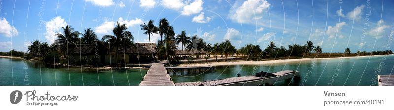 Karibiktraum Wasser Sonne Meer groß Kuba Palme Panorama (Bildformat)