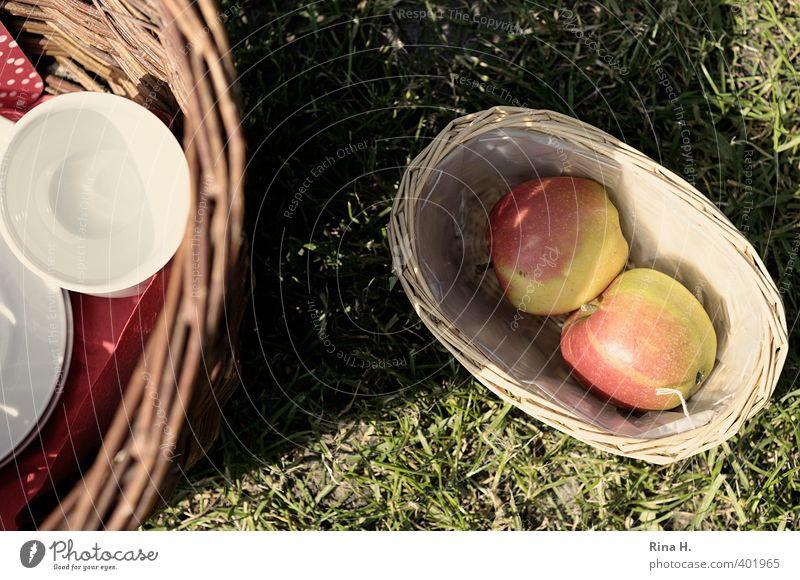 Picknick II Erholung Freude ruhig Wiese Wärme Lifestyle Schönes Wetter Fröhlichkeit Ausflug Lebensfreude Apfel Geschirr Tasse Korb Weidenkorb