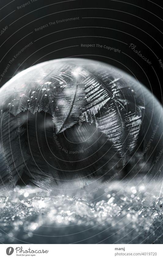 Feine Eiskristallstrukturen an gefrorener Seifenblase Kristalle harmonisch ruhig Leben Winter Frost Schnee außergewöhnlich dunkel authentisch dünn elegant