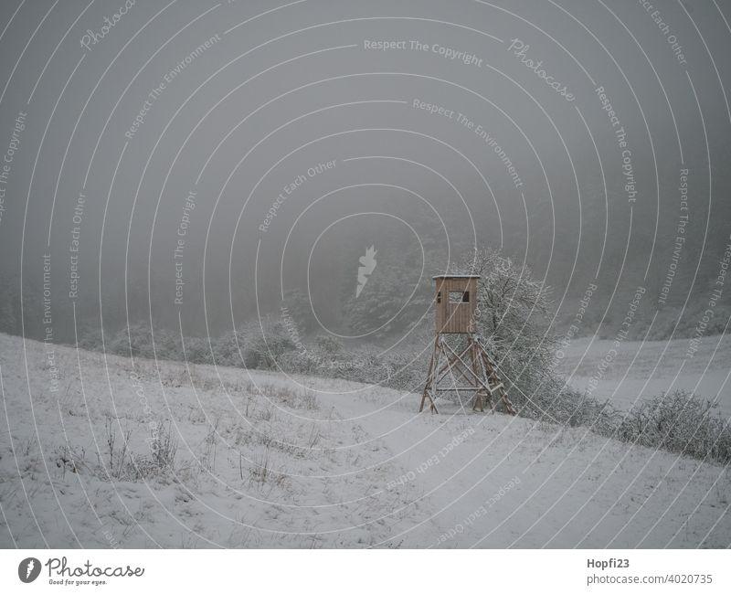 Winterlandschaft im Nebel mit Hochsitz weiß Landschaft Natur Nahaufnahme ländlich Feld Ackerland Schnee Sonne Sonnenschein Abendsonne kalt Himmel Baum Frost