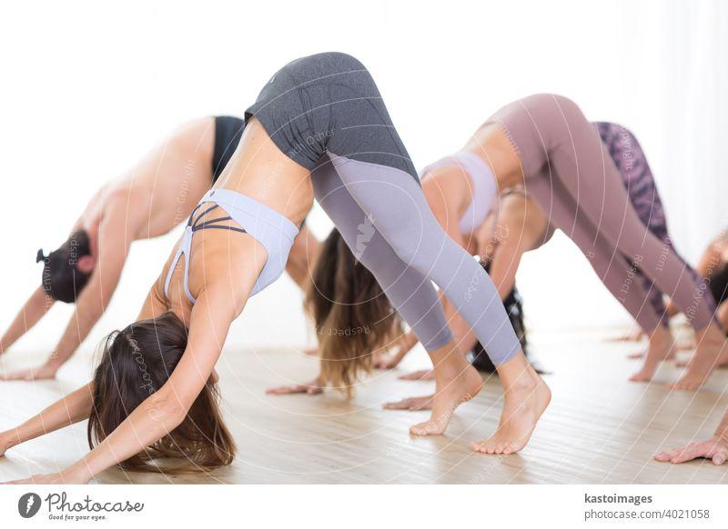 Gruppe von jungen sportlichen sexy Frauen im Yoga-Studio, üben Yoga-Lektion mit Lehrer, bilden eine Linie in Adho mukha svanasana nach unten Hund Asana-Pose. Gesunde aktiven Lebensstil, arbeiten in der Turnhalle