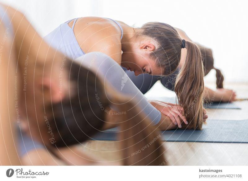 Gruppe von jungen sportlichen attraktiven Frauen im Yoga-Studio, üben Yoga-Lektion mit Lehrer, sitzen auf dem Boden in Vorwärtsbeuge Yoga-Sana-Haltung. Gesunde aktiven Lebensstil, arbeiten in Innenräumen in der Turnhalle