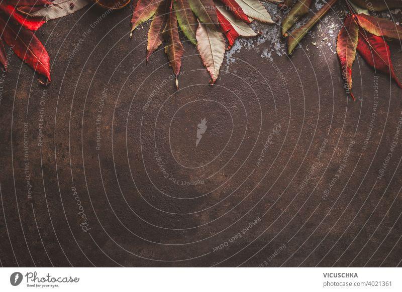 Dunkler Herbsthintergrund mit rotem Herbstlaubrand. Ansicht von oben dunkel Hintergrund Borte Draufsicht Hälfte Kürbis Rahmen Natur Design rustikal Blatt
