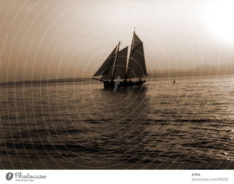 Segelschiff auf dem Gardasee Segeln Wasser See Lazise Italien Europa Schifffahrt Binnenschifffahrt Bootsfahrt Segelboot Wasserfahrzeug Bewegung Gewässer