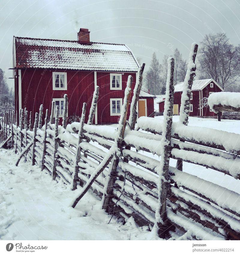 Winter in Schweden Schwedenhaus Zaun Holz Smaland Skandinavien skandinavisch Schnee Winterstimmung ruhig verschneit verträumt Schneelandschaft kalt Wintertag