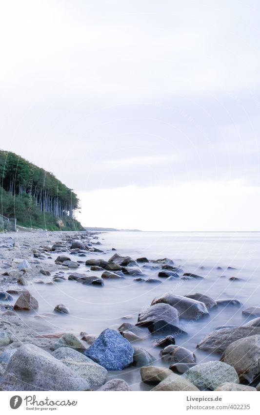 Ostseeküste Strand Meer Wellen Umwelt Natur Landschaft Sand Wasser Himmel Wolken Herbst Wind Pflanze Baum Wald Küste Stein Holz frisch Zusammensein kalt nass