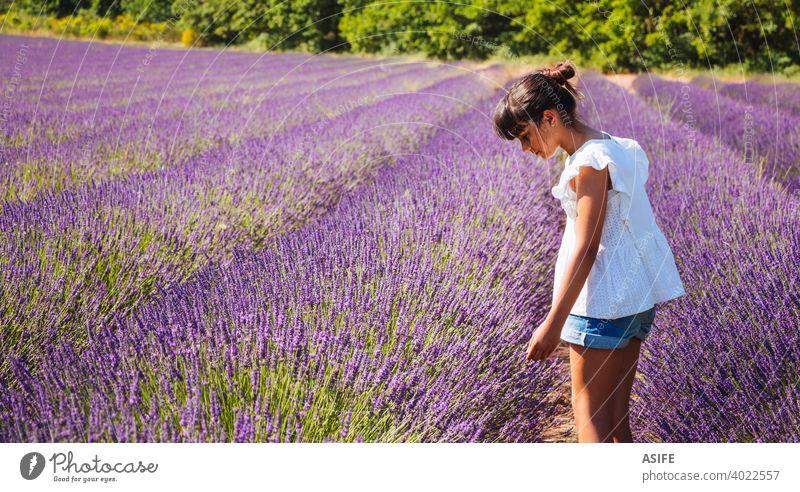 Cute glückliches Mädchen beobachten die Blumen in einem Lavendelfeld im Sommer Feld Kind Spaß Freude Glück Provence Frankreich Natur Urlaub Wahrzeichen Menschen