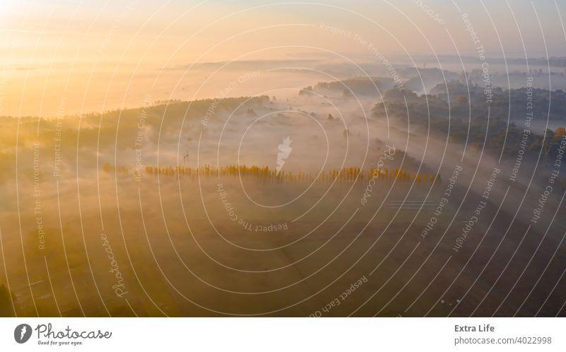 Schuss über der Landschaft, mehreren bebauten Parzellen und einem Teil des Waldes oben Antenne landwirtschaftlich Ackerbau anbaufähig Herbst Borte Schutzdach
