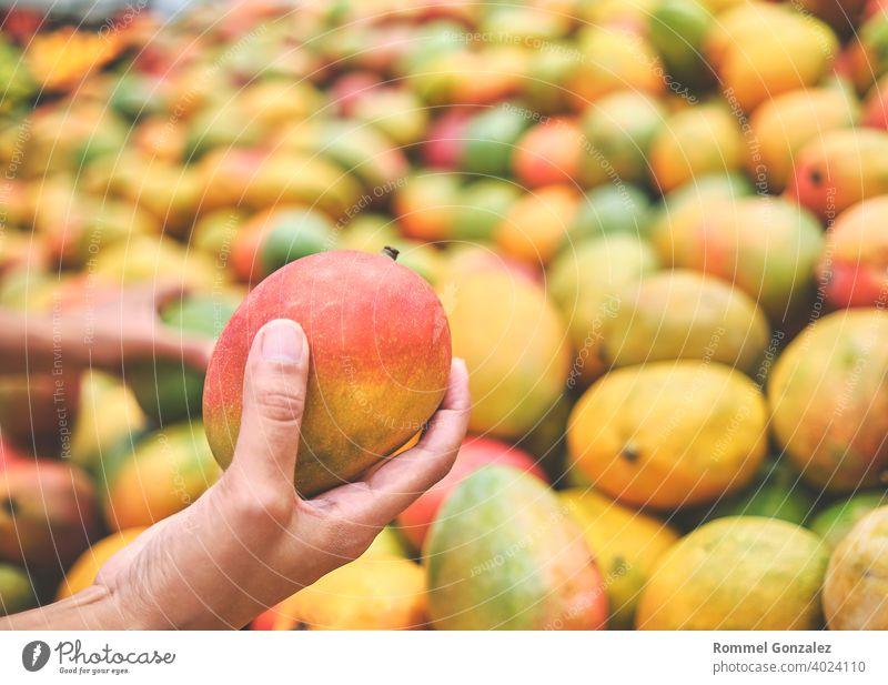 Junge Frau wählt Mango im Lebensmittelgeschäft. Konzept der gesunden Ernährung, Bio, vegetarisch, Diät. ökologisch Ackerbau Bio-Lebensmittel Vitamine