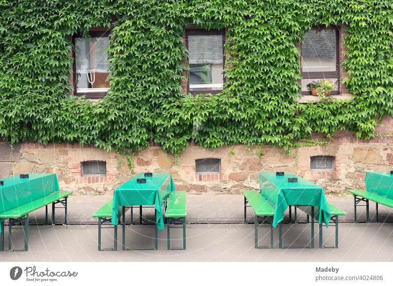Grüne Biergarnitur mit Tischdecken aus Wachstuch vor alter begrünter Fassade bei den Golden Oldies im Sommer in Wettenberg Krofdorf-Gleiberg bei Gießen in Mittelhessen