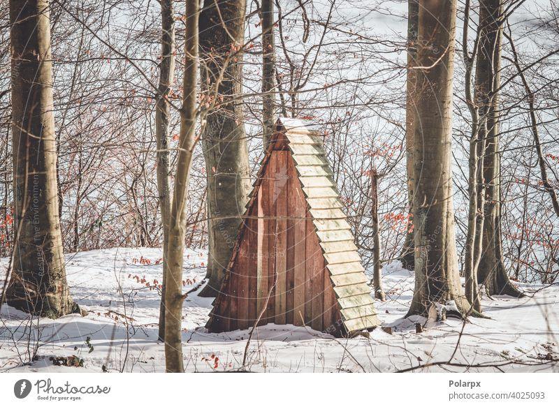 Kleiner Unterstand in einem Wald mit Schnee Hütte winzig Dänemark Forstwirtschaft Cottage erkunden Skandinavien Buchsbaum Tag Jagd Futter Futtermittel Nutzholz