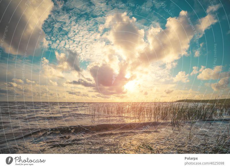 Schöner Sonnenuntergang am Meer Feiertag stumm Skandinavien Schilfrohr Morgendämmerung See farbenfroh Park Fluss Ansicht Saison natürlich Tourismus orange Cloud