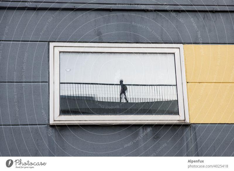 Alien Spiegelung Fenster Außerirdischer alien Silhouette Farbfoto Angst Kontrast Mensch Reflexion & Spiegelung Außenaufnahme Traum Halluzination Gestalt
