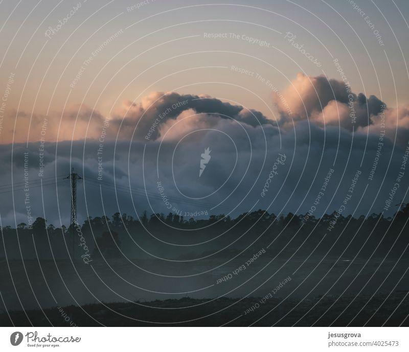 Die Ruhe vor dem grauen Sturm Nebel Rauchwolke Wetter Nacht hoch Wald neblig Sonne Beleuchtung Herbst Licht Baum Natur Himmel nebliger Morgen Berge Wiesen