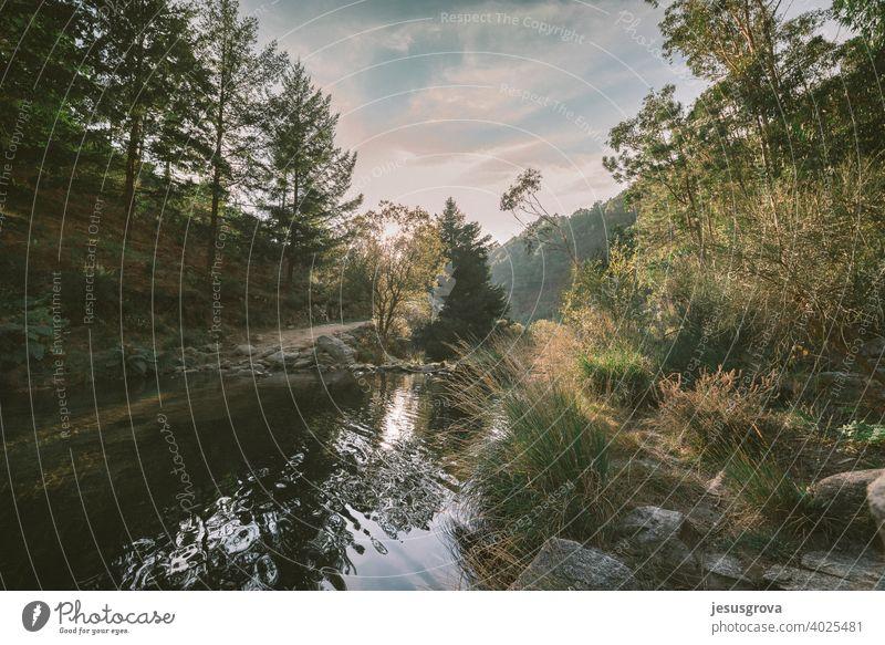 Letzte Lichter im ruhigen Fluss Berge u. Gebirge Landschaft Felsen Natur national Wald wolkig dramatisch Nationalpark Königreich Großbritannien Urlaub Hügel