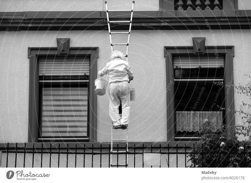 Malermeister mit weißen Haaren und Eimer auf der Leiter an der Fassade eines Altbau im Nordend von Frankfurt am Main in Hessen, fotografiert in klassischem Schwarzweiß