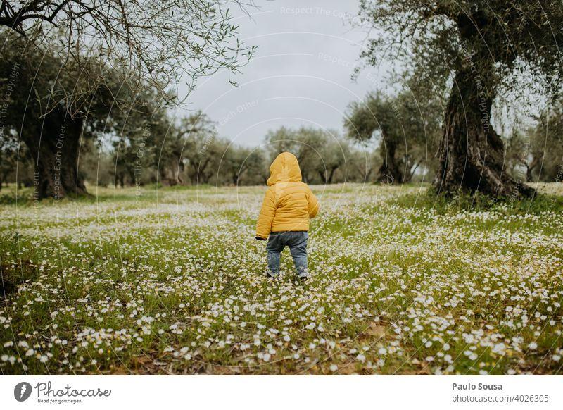 Rückansicht Kleinkind zu Fuß durch Frühling Blumen Feld Kind Kindheit gelb Frühlingsgefühle Frühlingsblume Blumenfeld Tag grün Blühend Blüte Farbfoto