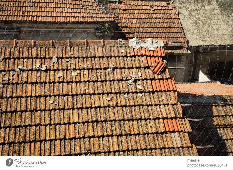 Dächer mit Ziegeln wird repariert Dach Dachziegel Dachgiebel Ziegeldach Haus Außenaufnahme Gebäude rot Menschenleer Farbfoto historisch Häusliches Leben alt