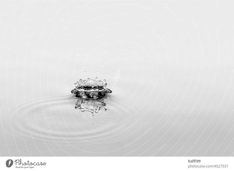 Wassertropen fallen und lassen Figuren entstehen Wassertropfen abstrakt Tropfen Regen Wasseroberfläche Detailaufnahme Tröpfchen Tropfenbildung liquide glänzend