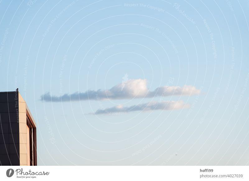 zwei Wolken ziehen sanft vorüber, ein Vogel sitzt auf einem Dach - Stille Wolkenbild Wolkenformation langezogen Wolken Himmel Morgenstimmung Abendstimmung