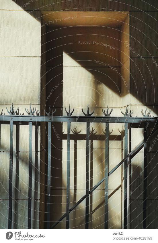 Dornenreich Sicherheit Schutz hoch fest Metall Zaun Haus schmal Abschottung Begrenzung Sicherheitszaun lückenlos eng Gitter Grenze Farbfoto Gedeckte Farben