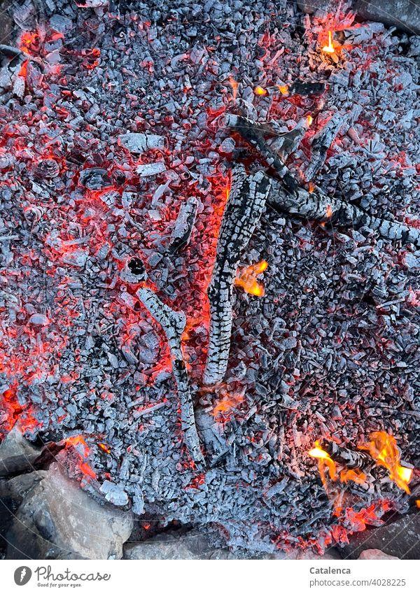 Auf heißen Kohlen Feuer Glut Asche heiss brennen Holz Hitze Flamme glühen Feuerstelle Wärme Rot Orange Grau Rauch