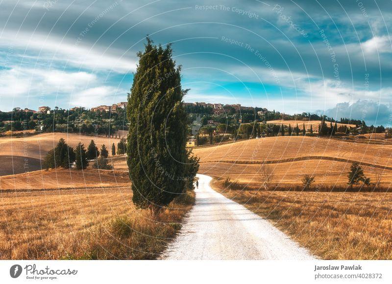 Herbst Herbst im italienischen Land Wechselblätter fallautumn Stimmung fallen Landschaft Natur Wald Saison Baum gelb Park Laubwerk natürlich orange Licht