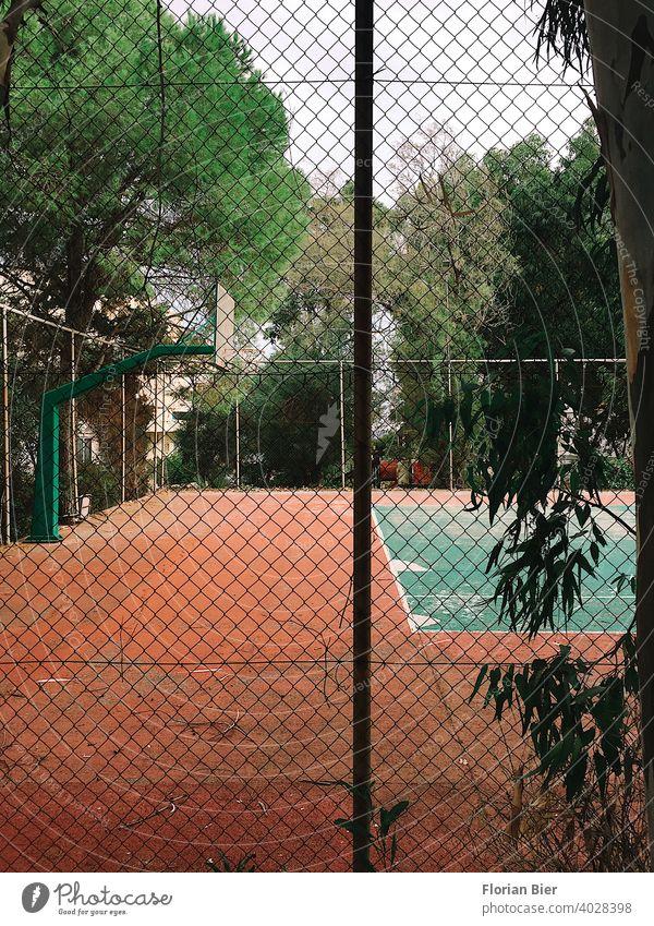 Eingezäunter Sportplatz mit der Möglichkeit zum Basketball und Tennis spielen umgeben von Bäumen Ballsport Spielen Spielfeld Platz Linie grün Tennisplatz
