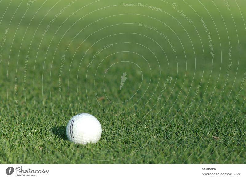 Golfball Sportrasen