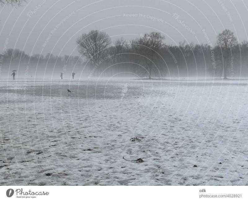 Nebellandschaft Park Winter Schnee Tauwetter Landschaft Bäume Menschen Spaziergänger Vogel Krähe 3 Personen monochrom Stimmung triste tristesse grau