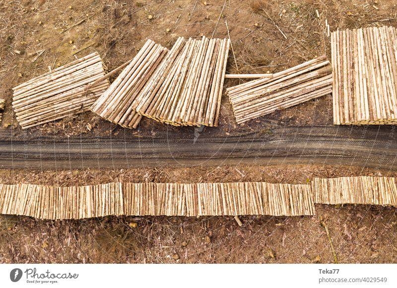 Holzstapel #2 baum holz baumstämme wald borkenkäfer von oben Klimawandel
