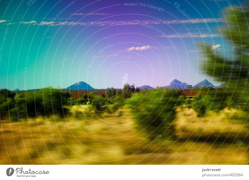 a long way off Ferien & Urlaub & Reisen Farbe Baum Landschaft Wolken Tier Ferne Berge u. Gebirge natürlich Wege & Pfade Freiheit Horizont Idylle frei