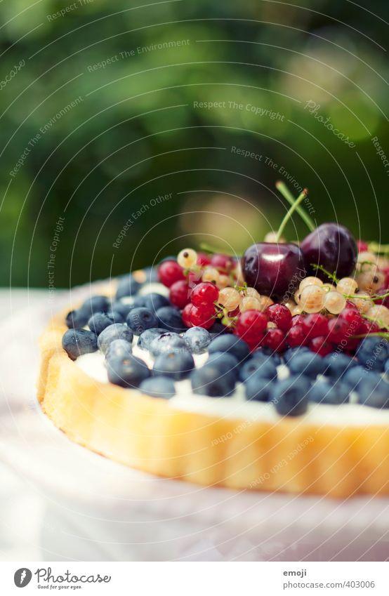 gepflückt Sommer Frucht Ernährung süß Süßwaren lecker Kuchen Beeren Picknick sommerlich Dessert Kirsche Vegetarische Ernährung Saison Blaubeeren Johannisbeeren