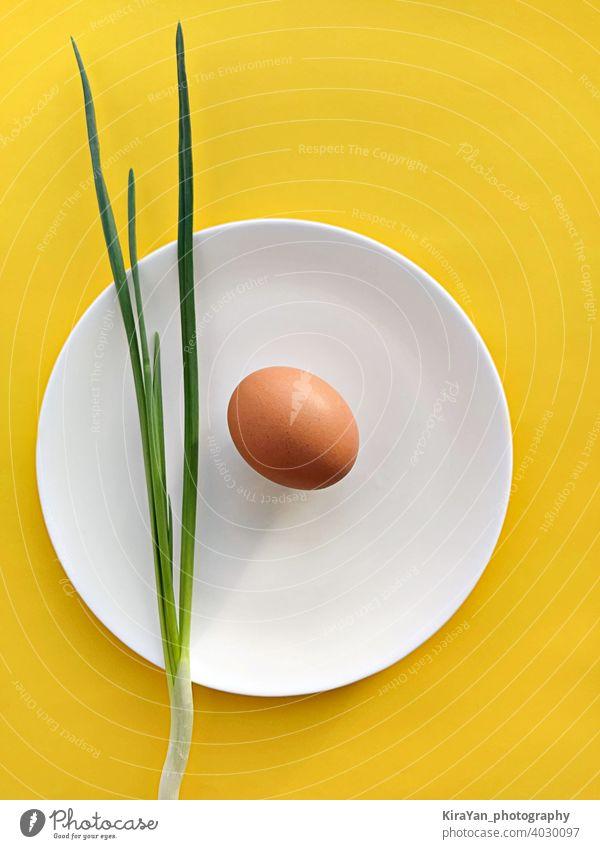 Scallion Zwiebel und Ei auf weißem Teller gegen gelben Hintergrund Lebensmittel Mittagessen Stillleben flache Verlegung Snack Konzept sehr wenige vertikal