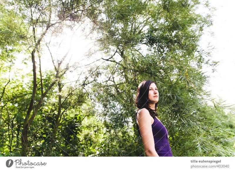 Lila, grün und sonnig. Sommer feminin Junge Frau Jugendliche Erwachsene 1 Mensch 18-30 Jahre Umwelt Natur Sonne Schönes Wetter Baum Park Wald brünett langhaarig
